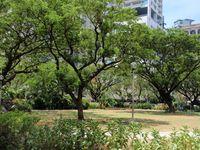 Velasquez Park